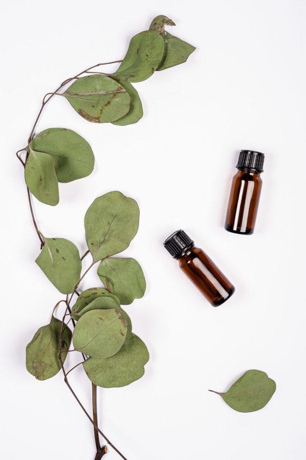 scentent namu kvapas
